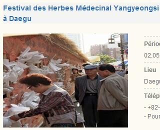 festival01.jpg
