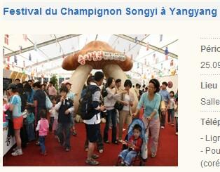 festival05.jpg