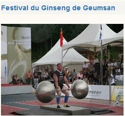 festival14.jpg
